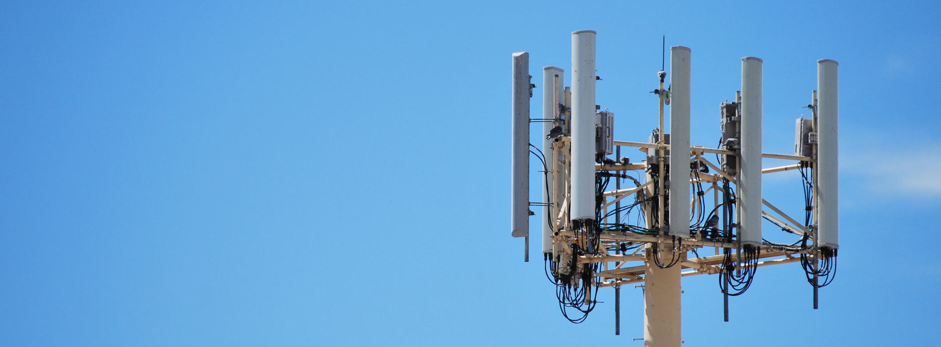 A Monopole Cell Phone Tower